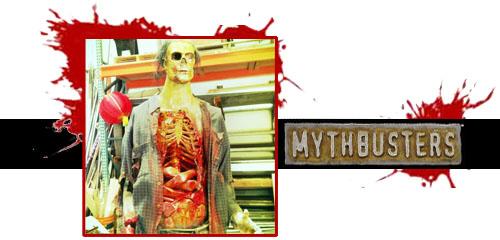 MythBusters Header